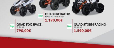 Quad in vendita